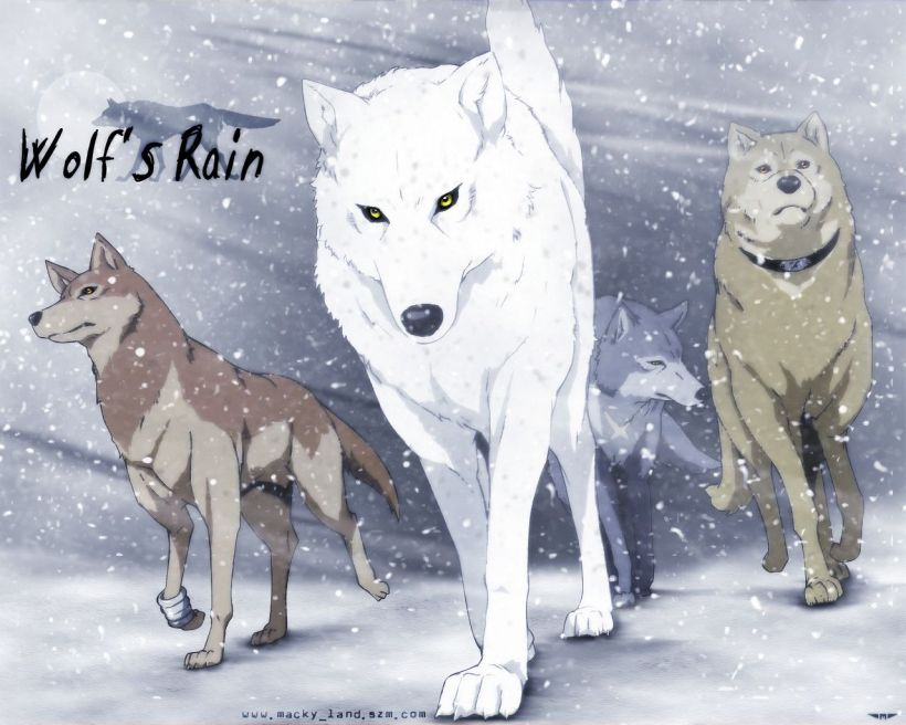 wolfs-rain-5